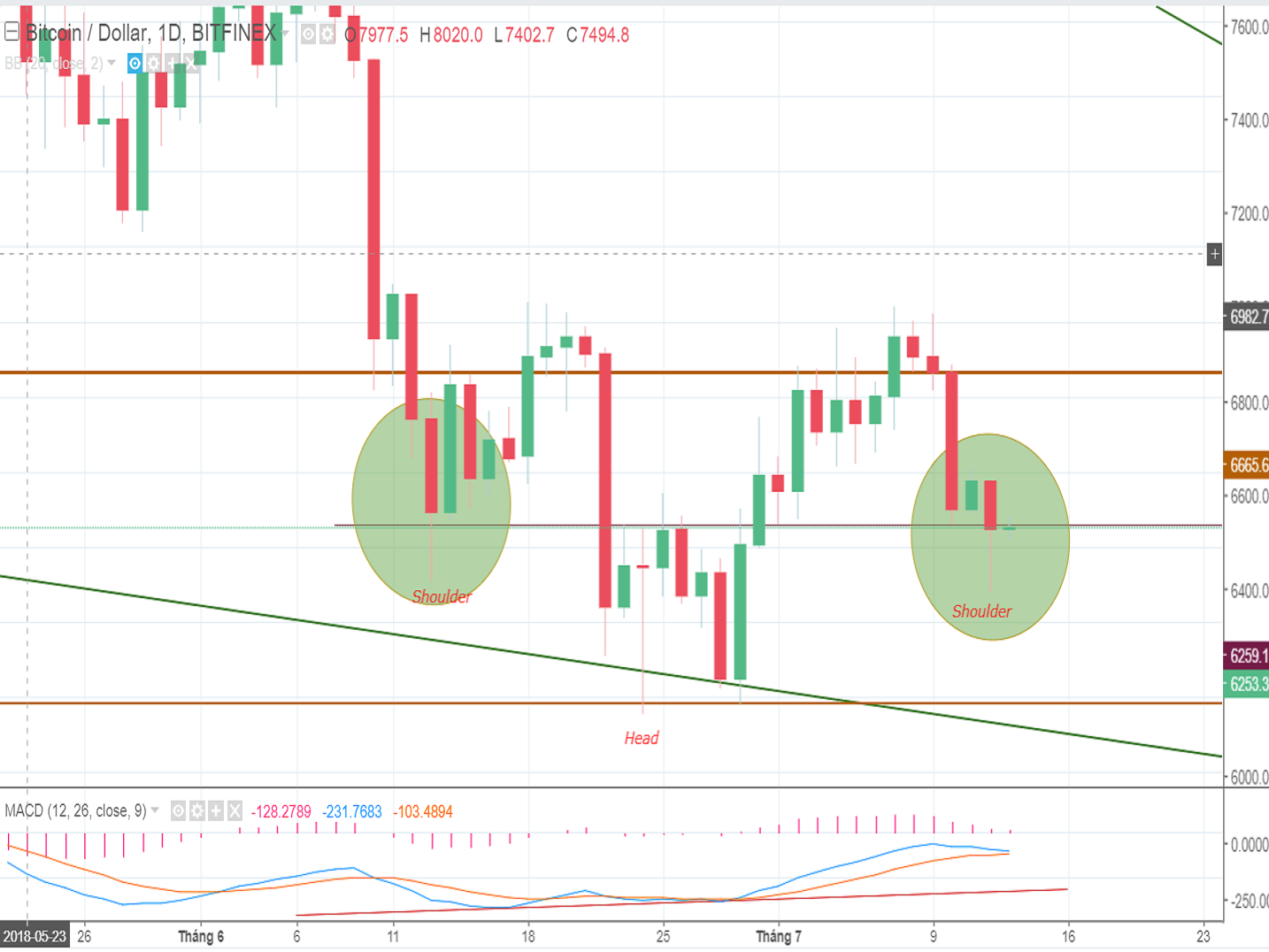 Bitcoin price analysis and forecast (Friday, July 13th): The bear continues to pose a threat to the Bitcoin price